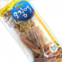 동해안 오징어 5미